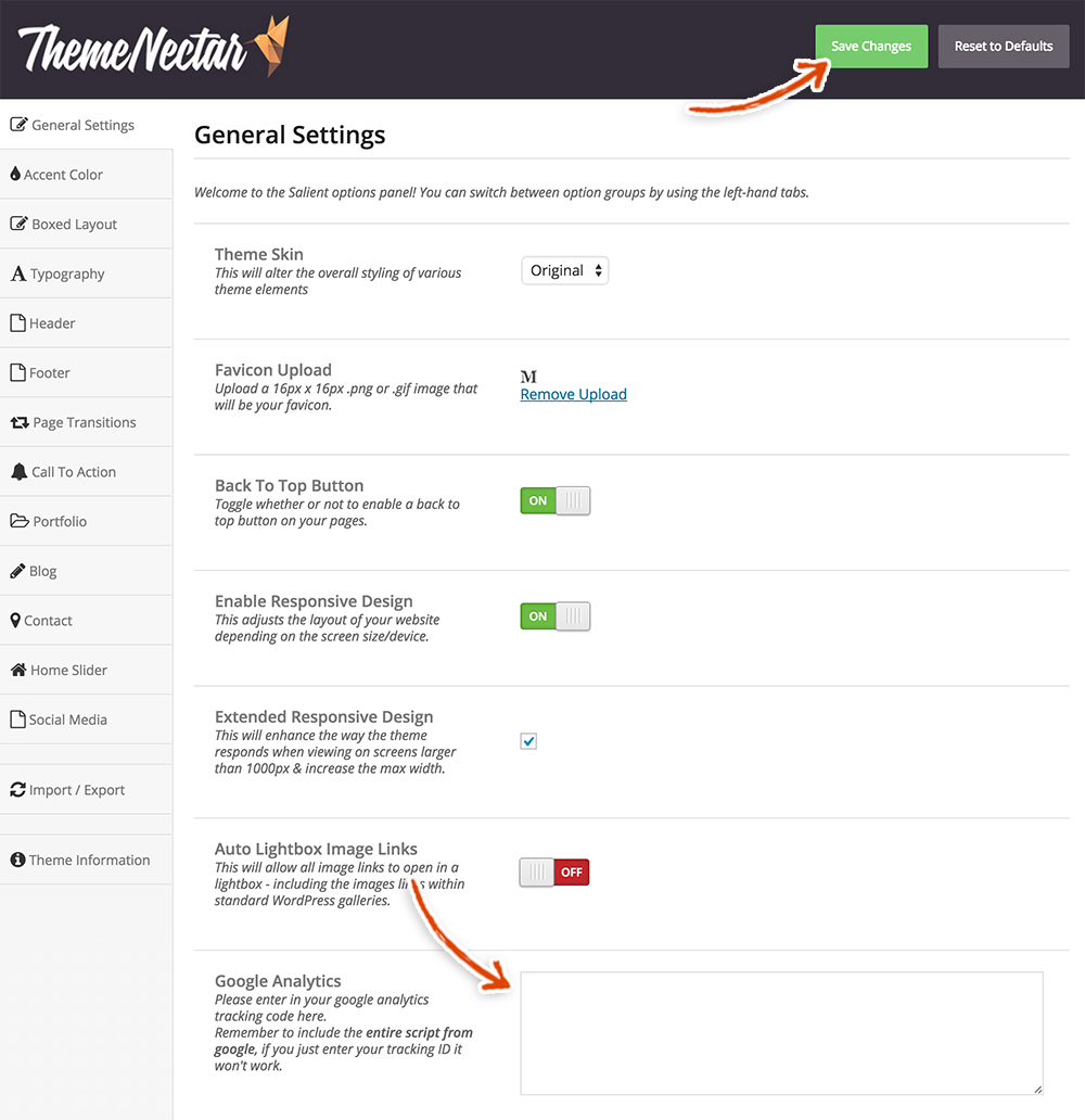 salient-theme-general-settings-google-analytics