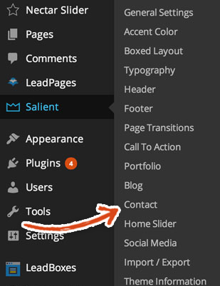 salient-theme-salient-contact-settings