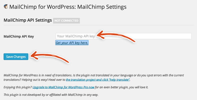 mailchimp-wordpress-plugin-settings-api-key